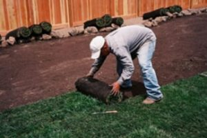 AllSeasons Lawn Care and Installation