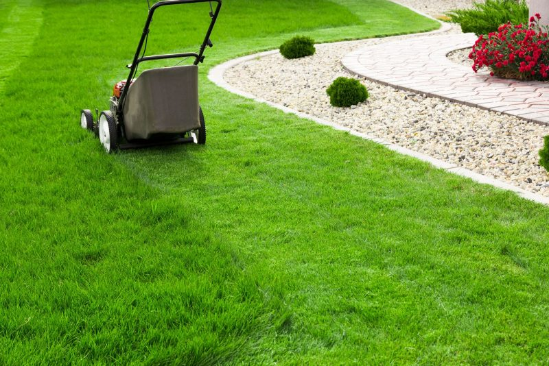 Allseasons Home Page Lawn Care