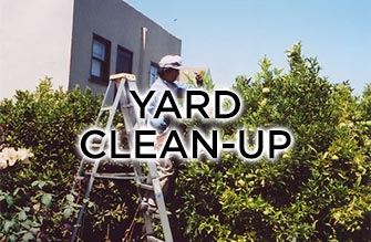 yard cleanup work