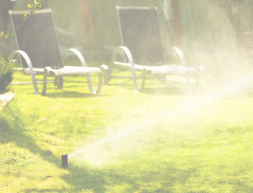 Save the Headaches and Hire a Sprinkler Installation Professional