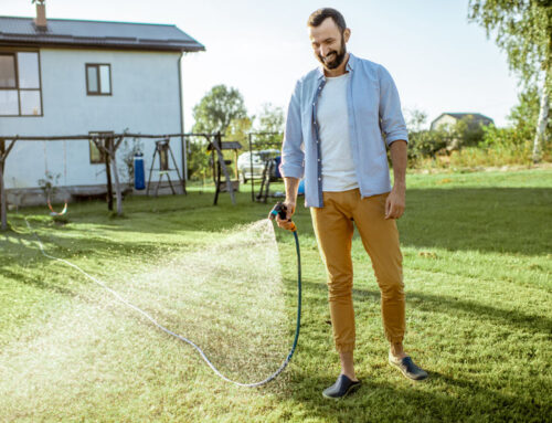 How Much Water is Enough for a Healthy Lawn